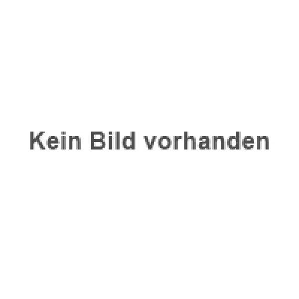 Wohnen  Boxspring-Betten  Möbel Leu GmbH